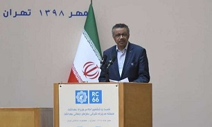 Iran, leading country in health sector in region: WHO chief